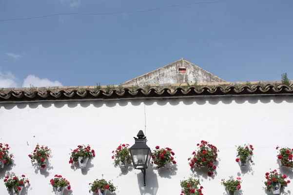 Córdoba, El Zoco Municipal