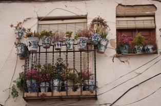 Granada, balcone all'Albaicìn