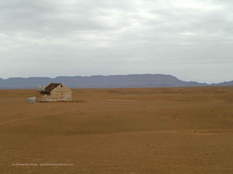 Dunes de Nakhla - la nostra toilette!