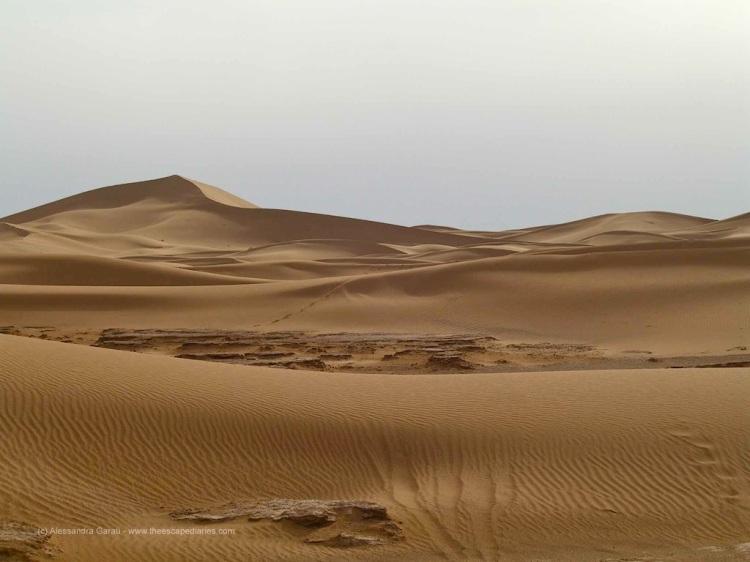 T_E_Diaries_Marocco55