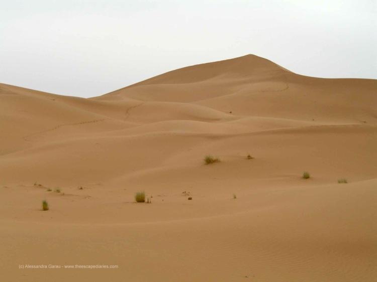 T_E_Diaries_Marocco63