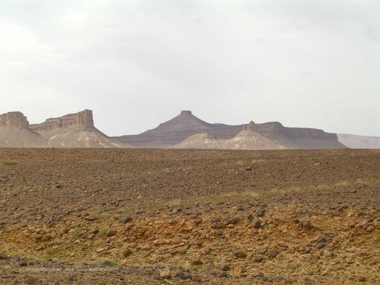 Sahara, verso Foum Zguid