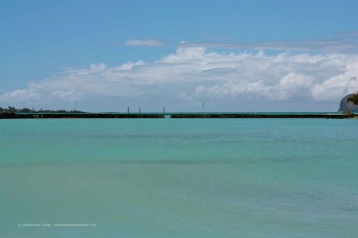 T_E_Diaries_Mauritius12