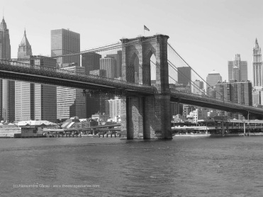 T_E_Diaries_NYC72