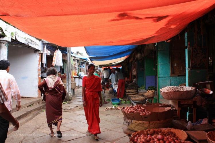 T_E_Diaries_SouthIndia67