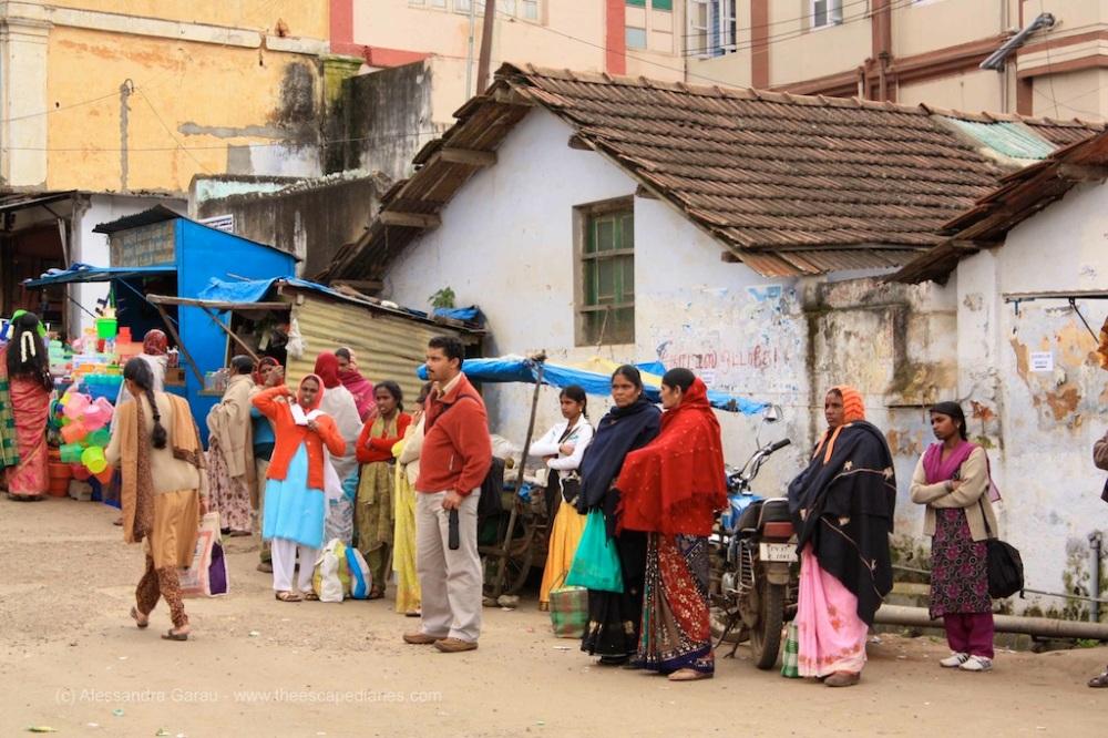 T_E_Diaries_SouthIndia77