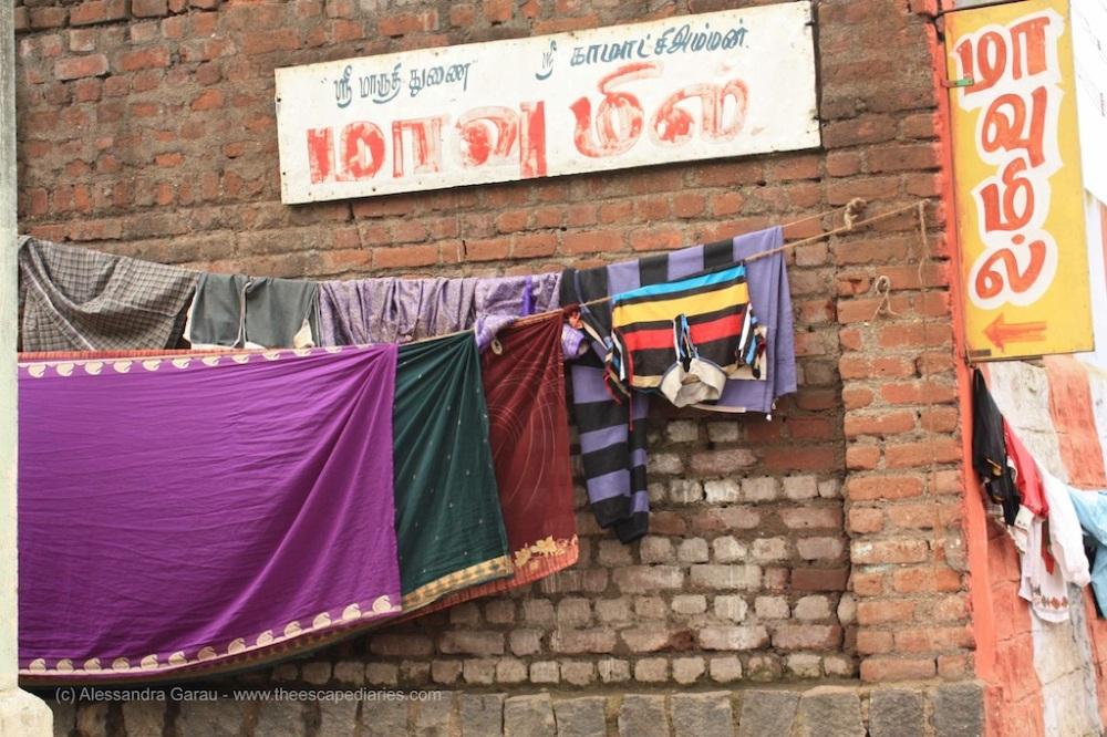 T_E_Diaries_SouthIndia78