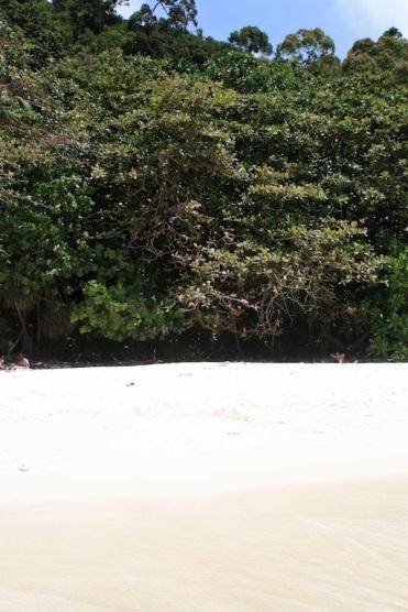 Perhentian Besar, Turtle Beach