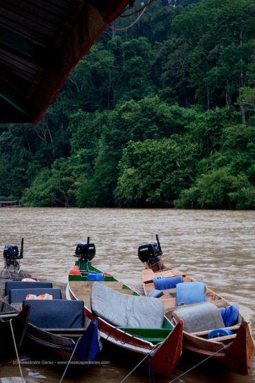 Sungai Tembeling, Taman Negara