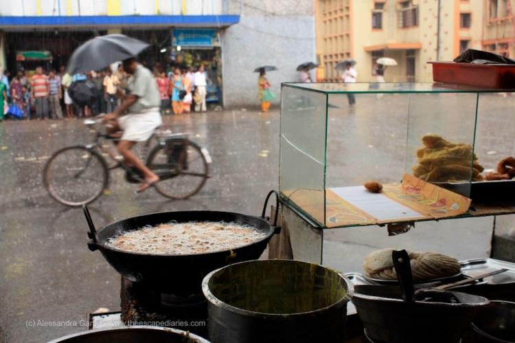 T_E_Diaries_SouthIndia123