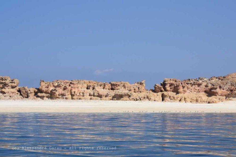Isole Daymaniyat