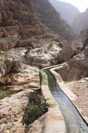 Wadi Shab, il falaj