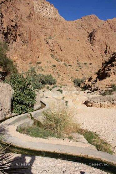 Wadi Shab, canali d'irrigazione