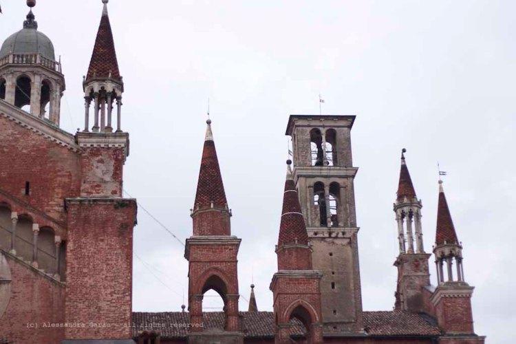 Pavia_Certosa_TEDiaries20