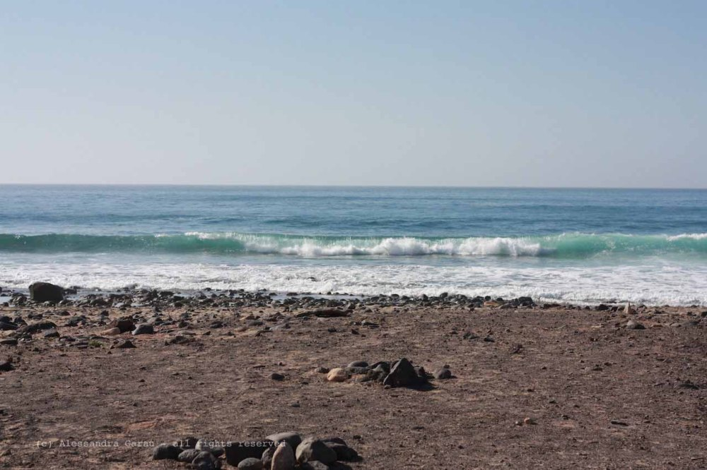 The_Escape_Diaries_canarie03
