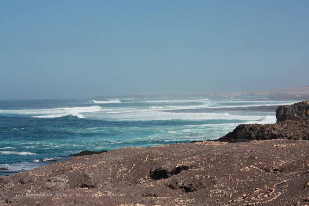 The_Escape_Diaries_canarie09