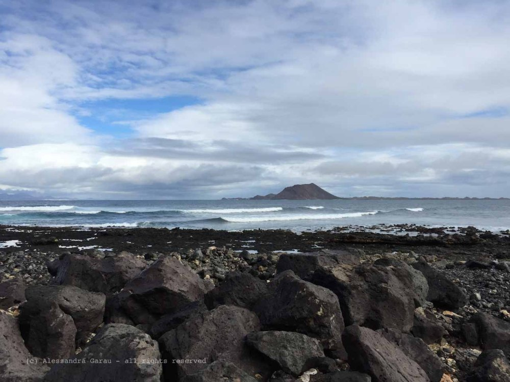 The_Escape_Diaries_canarie133