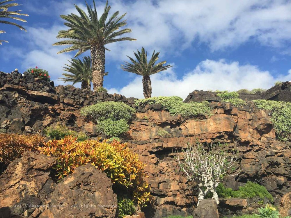 The_Escape_Diaries_canarie147