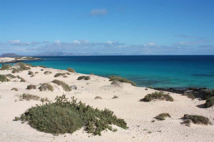 The_Escape_Diaries_canarie50