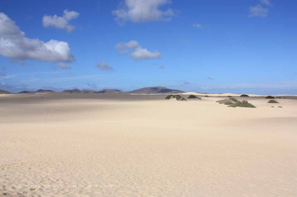 The_Escape_Diaries_canarie52