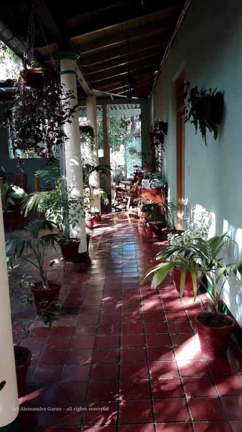 Hostal Buen Viaje: il giardino