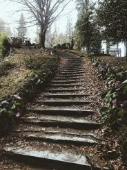 Le ultime passeggiate